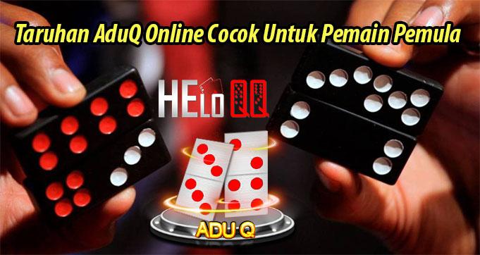 Taruhan AduQ Online Cocok Untuk Pemain Pemula